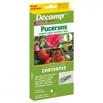 Chysopes (Chrysoperla camea) Pack Prepayé Décamp'®