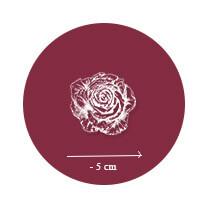 Rosiers Arbustifs à petites fleurs