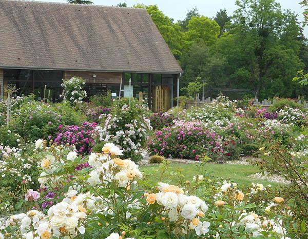 Le jardin André Eve